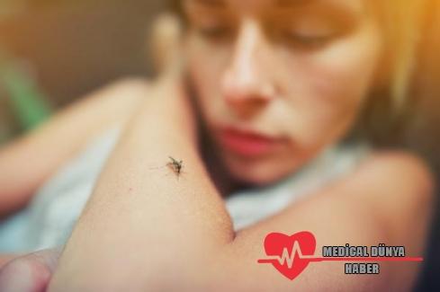"""""""Batı Nil Virüsü 20 farklı tür sivrisinekle bulaşabiliyor"""""""