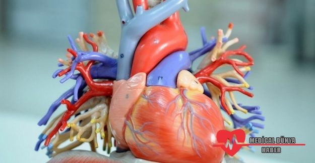 Kalp sağlığı için stent mi, bypass mı?