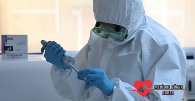 Koronavirüs'ün iki farklı mutasyonu tespit edildi! Çok daha ölümcül